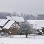 winterpause1