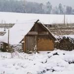 winterpause15