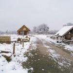 winterpause16