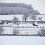 winterpause2