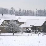 winterpause3