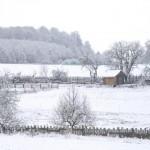 winterpause4
